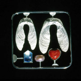 6.8 'Love Kit' 2000. Brooch; white metal, cultured pearl, aquamarine, sponge coral